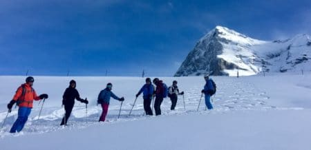 Freeride Grindelwald